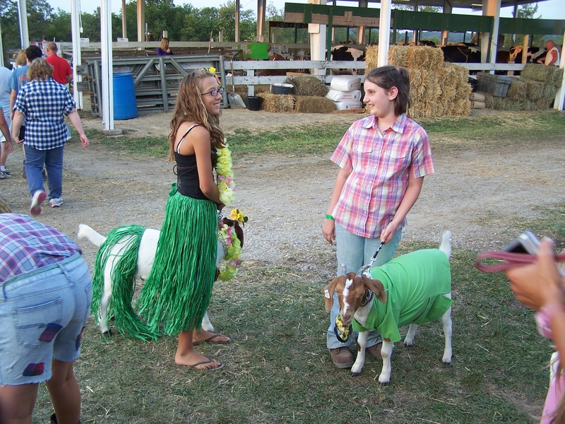 Animal dress up parade